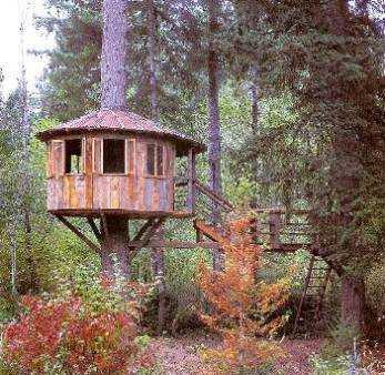 Casa en el cielo taringa - Casas en el arbol ...