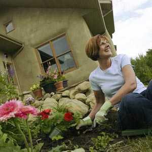 Consejos cuidado de plantas page 11 for Jardin chico casa