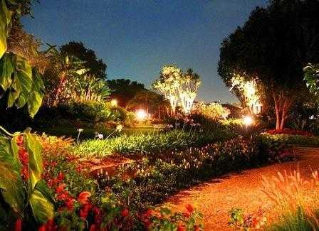 disenhar-jardin2